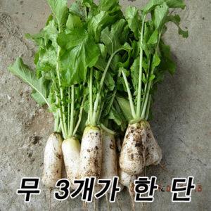 총각무 5단-금.토 배달가능