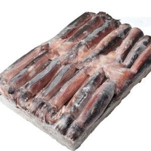 물오징어 박스 [17.5kg]-#1 size