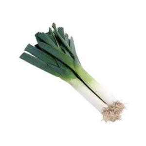 Big Leek(서양 대파) 1뿌리