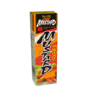 S&B Hot Mustard in Tube 40g