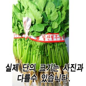 열무 5단-금,토 배달시 가능